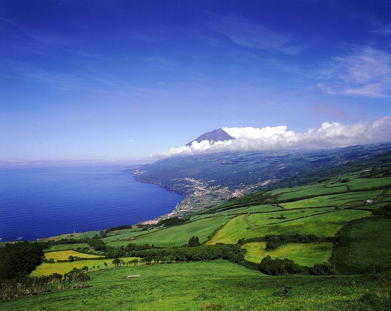 Landscape in Pico island, the Azores