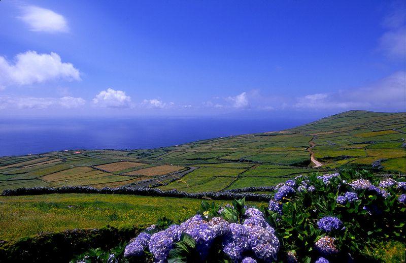 Landscape Corvo Island, the Azores