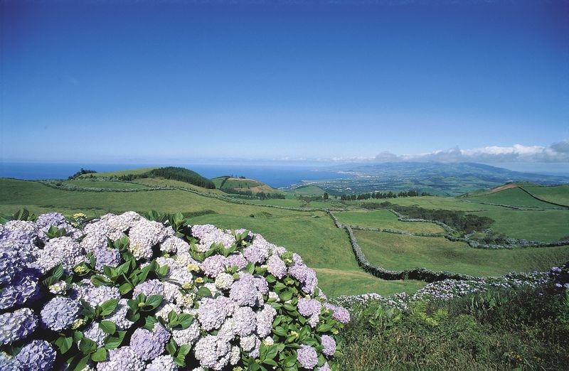 Monte da Achada in Angra do Heroísmo - Terceira island -  Azores by Jo╞o Paulo - T09AUH18