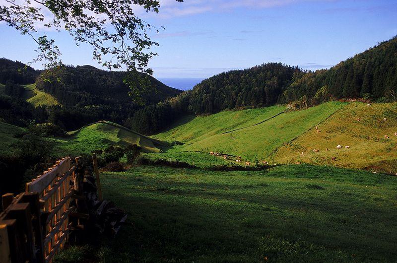 Landscape in Santa Maria island - Azores by Associaç╞o de Turismo dos Açores - T09AUH32