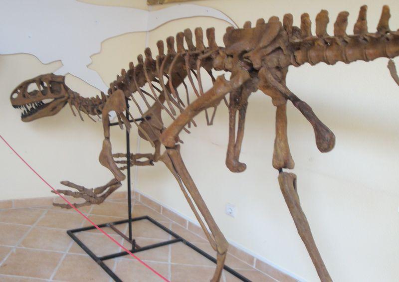 Lourinhanosaurus_antunesi
