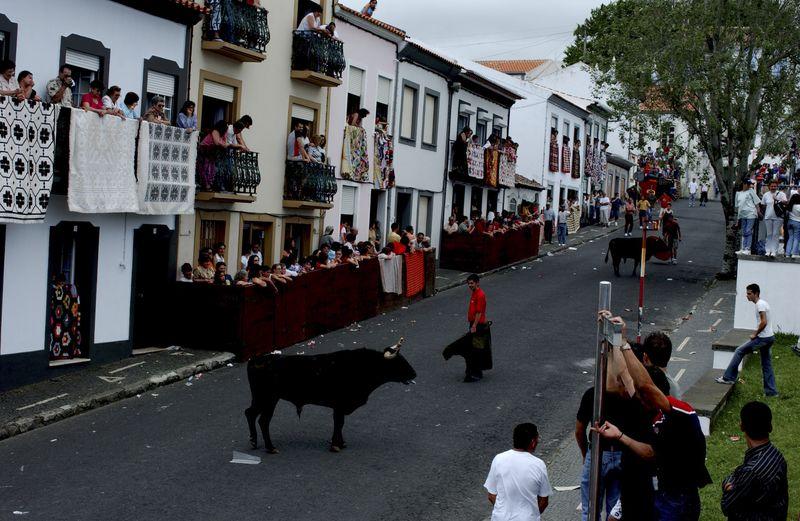 Terceira - Largada de Touros - DSC_0054 Photo credit to Associacao Turismo dos Acores