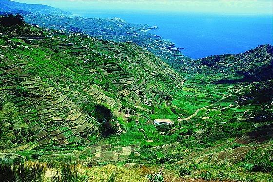 Landscape._Madeira_island