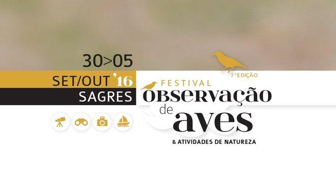 Festival-Observação-de-Aves_660x371