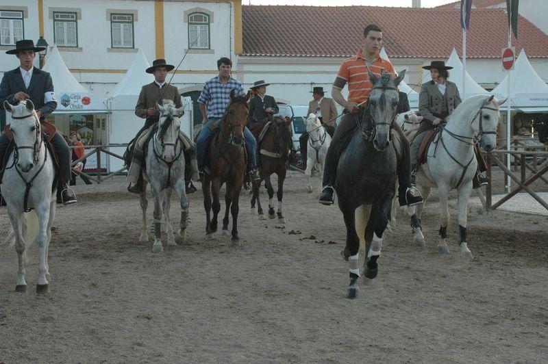 Cavalos_golega1