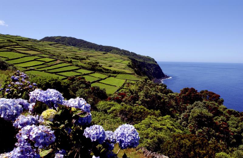 Landscape in Terceira island - Azores by Associaç╞o de Turismo dos Açores - T09AUH3P