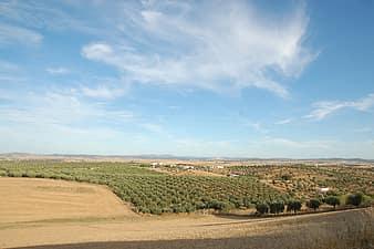 Portugal-alentejo-europe-landscape-sunny-sky-blue-green-scenic-thumbnail
